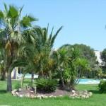 Finca Gardens - Clients Accom